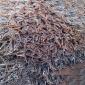 废模具工厂废料回收交易_工厂废料回收