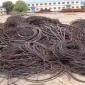 含铜电缆回收,电缆回收厂家