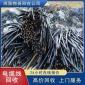 低压电缆回收 北京电缆回收公司 价高同行 当场结算
